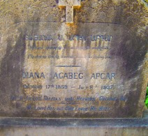 Diana's gravestone. Yokohama